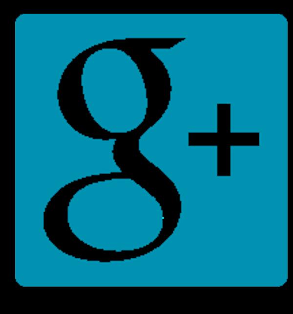 Google+ icon